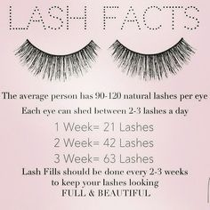 Lash Facts!  Its important to keep up on your lash fills to keep your own lashes healthy and prevent the lashes from flip flopping.  Our Classic Eyelash-extension special is currently running for our grand reopening coming up in April 12th-May 12th  Book online with Leidi Jen or Shary at  http://ift.tt/2mhaW0k  @atouchofcolormakeup.com  #eyelashextensions #sheltonctsalon #ctlashstudio #fairfieldcounty #newhavencounty #lashesct #ctbride #lashlove #prettylashes #lashaffairbyjparis…