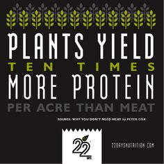 Plants yield 10 times more protein per acre than meat.