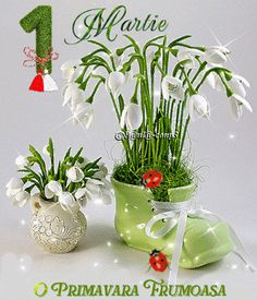 gif photo by Happy Day Gif, Happy Birthday Italian, Beautiful Flowers, Beautiful Pictures, 8 Martie, Gif Photo, Merry Christmas Everyone, Cool Websites, Flower Arrangements