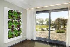 Bildergebnis für live picture mobilane Wall Garden, Windows, Places, Wall, Suite