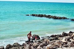 Caspersen Beach. Venice, FL. Great spot to snorkel. Venice, FL is known as the shark tooth capitol of the world. This beach is where you'll find the most megladon shark teeth- that's hand sized shark teeth people! Plus you'll find thousands of little ones laying in the sand.