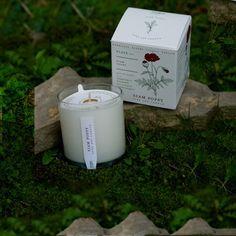 nicerworld.com - KOBO Candles - Seeds Collection - Siam Poppy