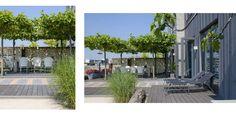 Stadstuin IJburg - Denkers in TuinenDenkers in Tuinen | Ontwerpers van stijlvolle en tijdloze tuinen