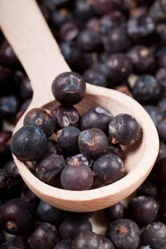 """""""Juniper berry is known for cleansing and purifying the spirit as well as being a spiritual protector and remover of negative energy,"""" says Susan Keene, director of Nidah Spa at Eldorado Hotel & Spa (Santa Fe, NM), adding that it has more tangible, physical attributes, as well."""