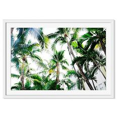 Natalie Obradovich Miami Palms Photographs ($299) ❤ liked on Polyvore featuring home, home decor, wall art, miami wall art, tropical palm trees, photo wall art, tropical palms and tropical palm plants