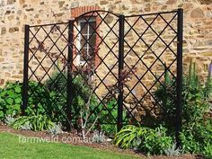 Freestanding steel wall trellis in 3 panels. Powder coated finish, in front of the coach house at the National Trust's, Beaumont House. Pergola Ideas For Patio, Cheap Pergola, Pergola Patio, Pergola Plans, Pergola Kits, Gazebo, Backyard, Garden Trellis Panels, Wall Trellis