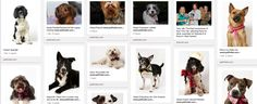 Pinterest Takeaways From Brands That Are Doing It Right