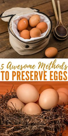 5 Awesome Methods to Preserve Eggs - Eggs are nothing like the canned veggies you buy at the grocery market – their expiration date should be heeded with serious caution as some pretty bad illnesses can be caused by rotten or expired eggs Canning Recipes, Egg Recipes, Preserving Eggs, Storing Eggs, Canning Food Preservation, Survival Food, Emergency Preparedness, Chicken Eggs, The Fresh