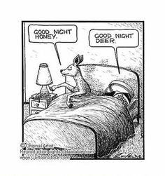 Good night Honey...Good night Deer... :)