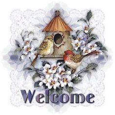 Hi looking for help and acceptance Welcome Pictures, Welcome Images, Welcome Flowers, Wallpaper Please, Welcome To The Group, Book Projects, Project Ideas, Hello Welcome, Flower Wallpaper