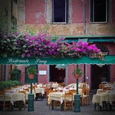 ristorante-puny-portofino