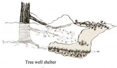 Improvised Shelters can Keep You Alive in Both Hot and Cold Weather -Posted on February 12, 2014