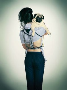 Pugs make everything more fashionable.