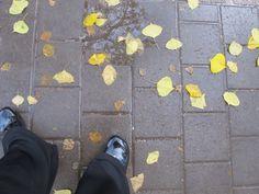 צעדים בגשם