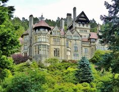 Cragside ~ Morningside Manor, the setting for Shine Like the Dawn by Carrie Turansky