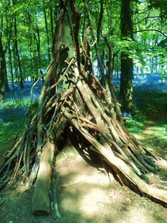 We love making dens in the bluebell woods. #nutmegcomp