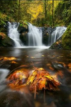 Autumn Emerald by Michael Bollino on Recently I spent a few great days shooting autumn color in the Columbia River Gorge. This is one of my favorite smaller falls all dressed in fall color. Mother Earth, Mother Nature, Amazing Photography, Landscape Photography, Travel Photography, The Places Youll Go, Places To See, Beautiful Waterfalls, Nature Scenes