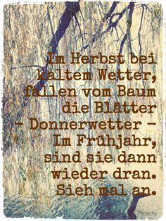 Ein Heinz Erhardt Spruch - genial -