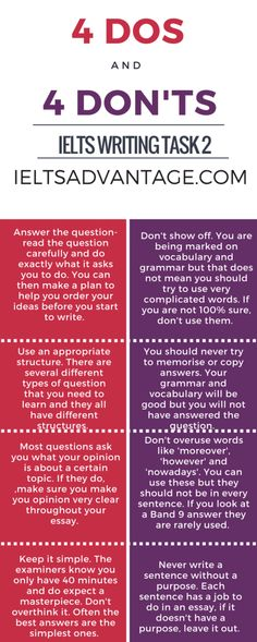 Essay writing strategies