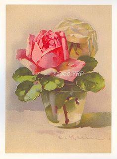 Deze zoete set van roze kool rose prints in helder glas vazen is door de Victoriaanse kunstenaar, Catherine Klein, een peer van Paul de Longpre. Elke afbeelding afbeelding is laser afgedrukt op zwaar materieel, en maatregelen 5 x 7 inch, dus elke past in een standaard formaat 5 x 7 inch frame. De achtergronden hebben geen roze in hen, maar zijn een licht beige kleuren die perfect complimenten van de rozen. Houd er rekening mee dat onze papier afdrukken auteursrechtelijk beschermd zijn en…