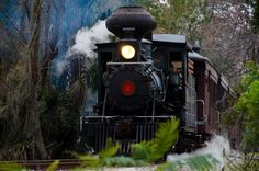 Did you know that Florida is home to a very special train, and you can still take an unforgettable ride? She's called the Orange Blossom Cannonball, and she's a movie star. by meredith Visit Florida, Florida Living, Old Florida, Florida Vacation, Florida Travel, Vacation Spots, Florida Trips, Tampa Florida, Vacation Wishes