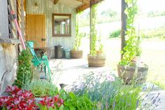 The Hop Shack, Penybanc Farm, Carmarthenshire. The spacious veranda, with hops growing in pots outside http://www.organicholidays.com/at/3428.htm.