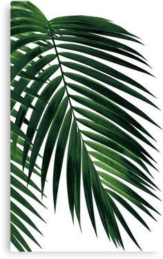 Tropical Green Palm Leaf Serving Tray by anitabellajantzart Art Tropical, Tropical Home Decor, Tropical Leaves, Tropical Furniture, Plant Wallpaper, Tropical Wallpaper, Green Wallpaper, Palm Leaf Wallpaper, Botanical Decor
