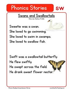 This Reading Comprehension Worksheet - Swans and Swallowtails is for teaching reading comprehension. Use this reading comprehension story to teach reading comprehension.