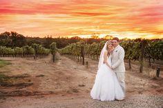 Viña Castellano Winery - Gabe and Tracy 2013