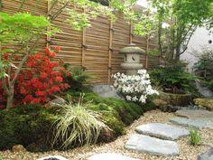 le jardin japonais au printemps