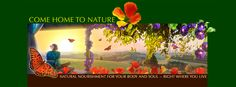 Facebook Timeline Banner Design for Carol Venolia and Come Home to Nature. The idea was to depict a peaceful scene and the feeling of both being indoors and outdoors in nature. This was a true collaboration!