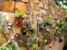 Planters WALL - growing in modern times Time And Tide, Stone Walls, Modern Times, Outdoor Rooms, Planters, Cottage, Paredes De Piedra, Rock Wall, Plant