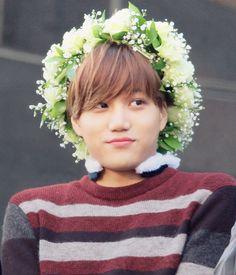Kai aigoo he's so cute :*