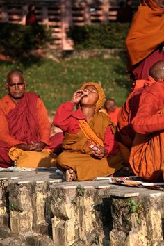 Taking a break Photo by Eklavya Prasad -- National Geographic Your Shot