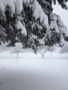 Winter in Northwest Indiana