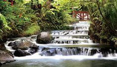 thermo mineral river in Alajuela, Costa Rica