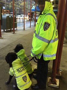 NYPD TRAFFIC COAT royalanimals.com #NYPD#coats#dogs