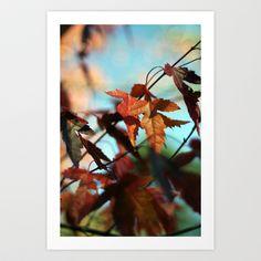 Autumn Leaves Art Print by Matthew J Parsons - $18.00