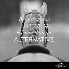 Because to you this view is better than any alternative. #equiline #horse #quote