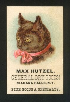 Victorian Trade Card - Hutzell Dry Goods.  Same cat, different ad co.