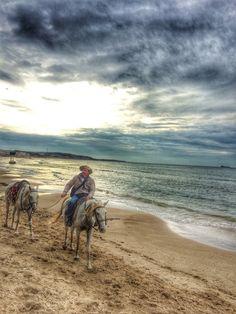 Sea, sand, cowboy