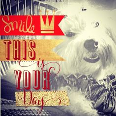 #smile #day