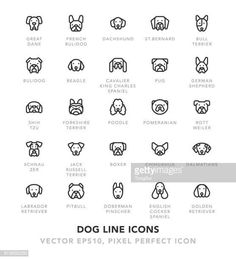 1267 Best Icons For Bujo Images In 2020 Doodles How To