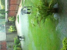 View frm my garden !!