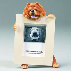 Chow Picture Frame (Set of 2)