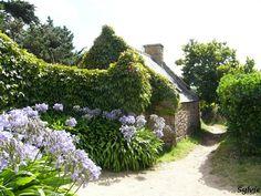 Ile de Bréhat / Bretagne