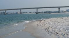 "Four Reasons You Should Follow ""The Beach is Calling"" Blog #GulfShores #OrangeBeach"