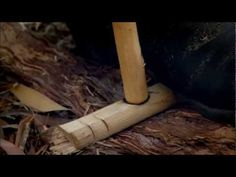 How to make a bow drill & start a fire