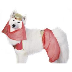 **Please note: We do not take returns of costumes after October 15. Finally! A dog Halloween costume that's both cute and creative! Dress your pooch up in this unique dog outfit from Rubie's Costumes!