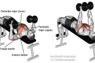 Decline hammer-grip dumbbell bench press exercise